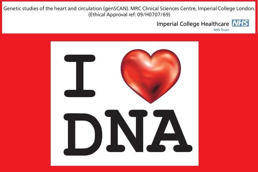 I love DNA2